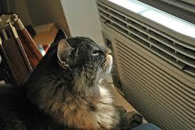 aire acondicionado 2